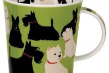 Household Scottish Terrier