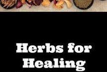 Medisinske planter og urter