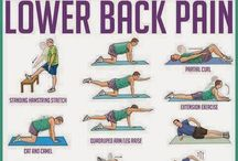 exercises to reduce lower back plans