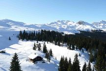 Skigebiet Ratschings-Jaufen / Das Skigebiet Ratschings-Jaufen zählt zu den schneesichersten und modernsten Skigebieten in Südtirol. Nahe am Jaufenpass in Suedtirol erstrecken sich 25km Skipisten inmitten der Berge in Ratschings. Neue Aufstiegsanlagen und wunderschöne Hütten werden Ihren Skiurlaub zu einem unvergesslichen Erlebnis machen. Für die Unterkunft ist das Naturhotel Wanderhotel Rainer im Jaufental die richtige Wahl.