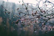 Drip, drip, drop, little April showers...