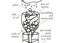 HOME - Gardening / by Manja ☁ Oort