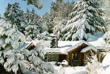 Winter wonderland!❄️❄️❄️