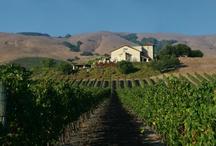 Sonoma Wineries / by Sonoma.com