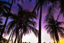 Need a Vacation? Resort & Spa