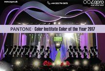Celebrate Color