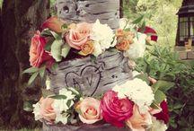 Our Sagewood Wedding