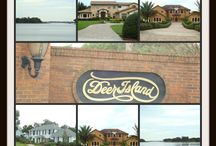 Winter Garden FL Neighborhoods