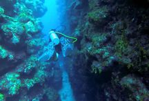 Roatan by Videos / Watch videos about the island of Roatan!