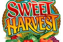 Sweet Harvest / Harvest season is here. Sweet Harvest video slot is a log in away.