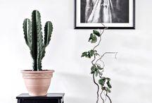 ♥ Krukor & Vaser / Pots & vases