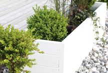 Landscaping ,Garden Ideas and DIY projects