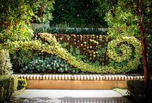 Beautiful Vines / Decorative Vines Perfect for the dream Scottsdale back yard. Swirl, diamond, criss cross and more.