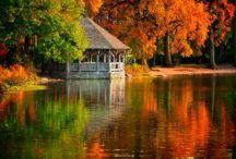 festés ősz