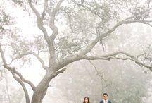 Wedding Trees ;)