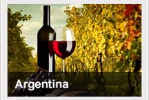 Argentina: Stunning natural wonders, elegant cities with European sophistication, and a passionate culture, make Argentina a unique travel destination.