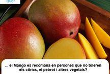 Mango / Mango / Aquí trobaràs curiositats sobre el mango / Aquí encontrarás curiosidades sobre el mango