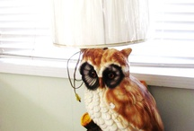 owls  / by Jessi Boller