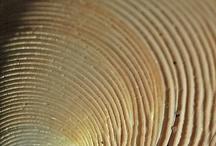 structuur en textuur / hoe iets voelt zacht ruw en structur is hoe het in elkaar zit (stof of een muur)