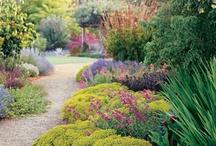 Garden Spots & Ideas