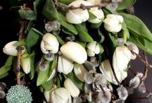 Цветы в Питере / Flowers in Piter