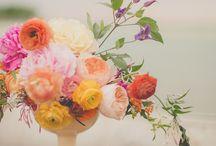 flowers / by Karen McClellan