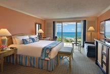 Best Hotels in Bermuda / Best Hotels in Bermuda including: THE FAIRMONT SOUTHAMPTON, FAIRMONT HAMILTON PRINCESS, GROTTO BAY BEACH RESORT, CAMBRIDGE BEACHES RESORT & SPA, THE REEFS HOTEL AND SPA, ELBOW BEACH BERMUDA, A MANDARIN ORIENTAL HOTEL, PINK BEACH CLUB