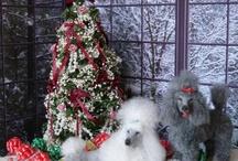 CHRISTMAS JA!!!!!!!!!