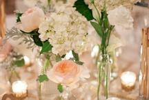 Terranea Resort Wedding - Rancho Palos Verdes / by Jaclyne Breault
