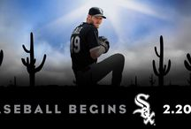 #SoxSpringTraining 2015
