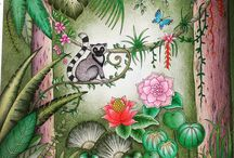 Johanna Basford - Magical jungle