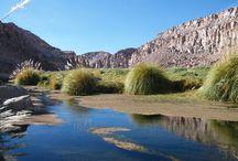 Sistema de Información Territorial Humedales Altoandinos / SITHA es el Sistema de información Territorial de Humedales Altoandinos, plataforma web en la que se construyó una línea base de humedales altoandinos del norte de Chile. Principalmente  las regiones del estudio son  Arica y Parinacota, Tarapacá, Antofagasta y Atacama ....   Mas en : http://www.ciren.cl/web/proyect.php?nSw=1&i=3