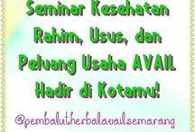 Seminar AVAIL