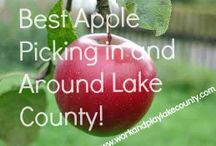 Work and Play Lake County IL