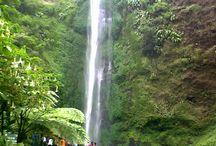 Tempat Wisata di Malang / Tempat Wisata di Malang yang paling menarik dan populer