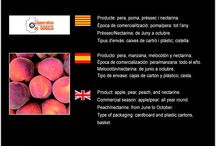 Agrop. i Sec. de Crèdit de Soses SCCL / Cooperativa de Fruita de Soses