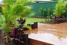 Tropical Australian Gardens