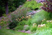 Landscaping steep slope