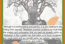 Meditation / by Jessica Walsh