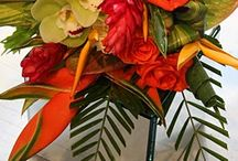 tropical designs / by Sophisticated Floral Designs