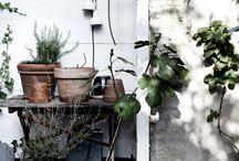 Home Decor / by Maria Mattice