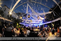 Wedding Receptions {Dinner & Dancing } / wedding receptions of past clients of nk productions wedding planning