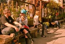 Cafe & Spot Area