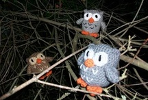 Owls...owls and more owls! / by Molly Bennett