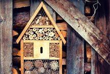 Bee houses idea