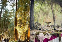 Bodas en el Bosque / Weddings in the Forest