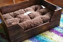 dogbed