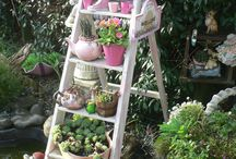 shabbychic gardens