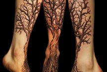 strom noha