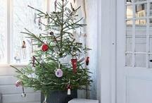 Christmas / by DougandTina Sutton